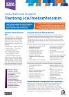 About Ice Fact Sheet (Indonesian)